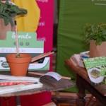 Sprout - der Stift der wächst