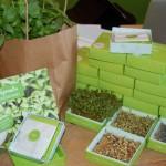 Tiny Garden  - neu von Sprout